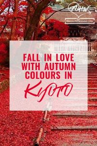 Fall in love with autumn colours in Kyoto Japan