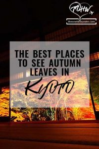 The best places to see autumn leaves in kyoto