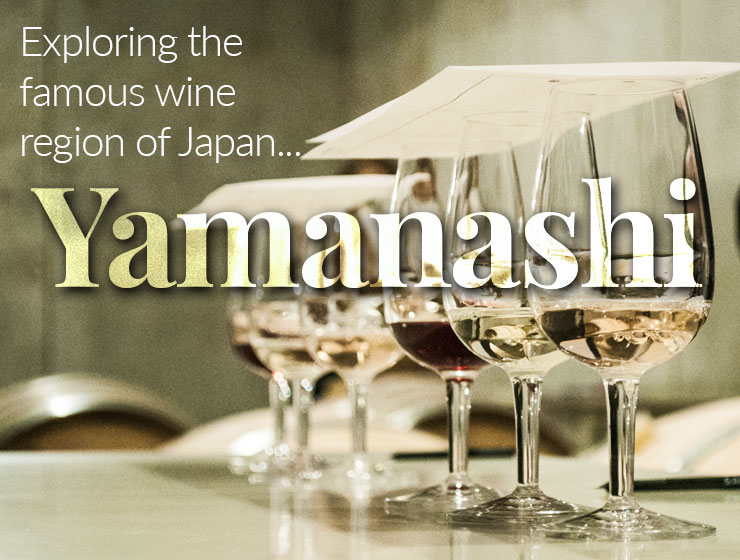 Exploring the famous wine region of Japan, Yamanashi