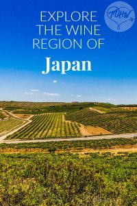 Explore the Wine Region of Japan