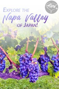 Explore the Napa Valley of Japan