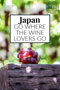 Japan Wine - Why you need to visit Japanese vineyards!