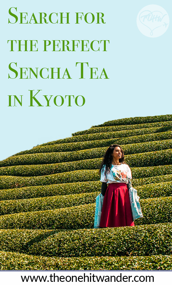 Search for the Perfect Sencha Tea in Kyoto! | Kyoto Tea | Sencha Tea | Japanese Tea | Matcha Tea Japan | Kyoto Travel | Kyoto Travel Guide | Japanese Tea Fields | Tea Farm Japan | Japan Guide | Kyoto Guide